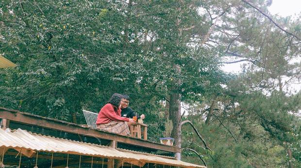"""Đà Lạt có 4 quán cafe theo phong cách """"chill phết"""" cực hiếm người biết: Nằm biệt lập giữa rừng thông, đứng góc nào sống ảo cũng đẹp - Ảnh 25."""