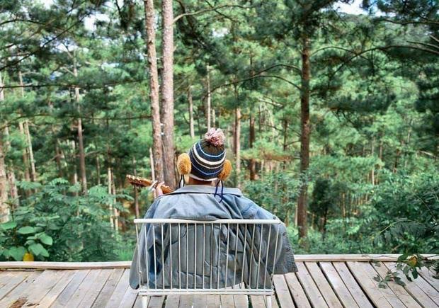 """Đà Lạt có 4 quán cafe theo phong cách """"chill phết"""" cực hiếm người biết: Nằm biệt lập giữa rừng thông, đứng góc nào sống ảo cũng đẹp - Ảnh 23."""
