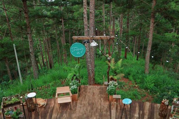 """Đà Lạt có 4 quán cafe theo phong cách """"chill phết"""" cực hiếm người biết: Nằm biệt lập giữa rừng thông, đứng góc nào sống ảo cũng đẹp - Ảnh 18."""