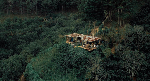 """Đà Lạt có 4 quán cafe theo phong cách """"chill phết"""" cực hiếm người biết: Nằm biệt lập giữa rừng thông, đứng góc nào sống ảo cũng đẹp - Ảnh 27."""