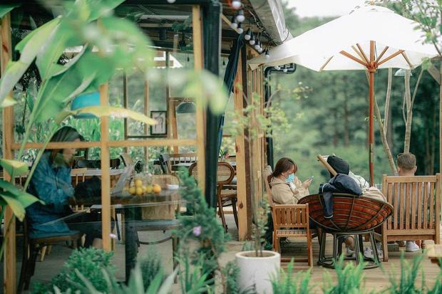 """Đà Lạt có 4 quán cafe theo phong cách """"chill phết"""" cực hiếm người biết: Nằm biệt lập giữa rừng thông, đứng góc nào sống ảo cũng đẹp - Ảnh 31."""