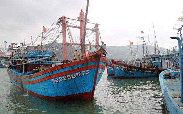 Đã liên lạc được với 26 ngư dân Bình Định mất tích - Ảnh 2.