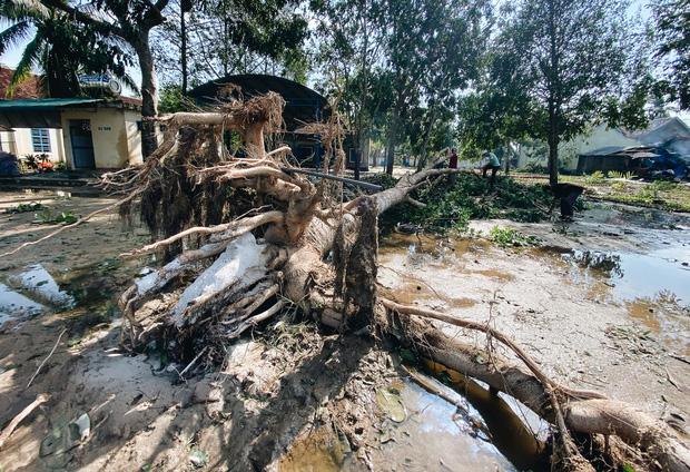 Trường học ở Bình Định tan hoang sau bão số 9, giáo viên vất vả dọn dẹp để chuẩn bị đón học sinh trở lại - Ảnh 6.