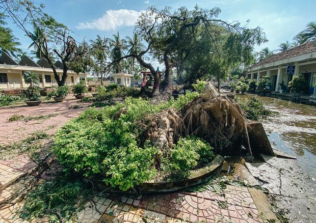 Trường học ở Bình Định tan hoang sau bão số 9, giáo viên vất vả dọn dẹp để chuẩn bị đón học sinh trở lại - Ảnh 1.