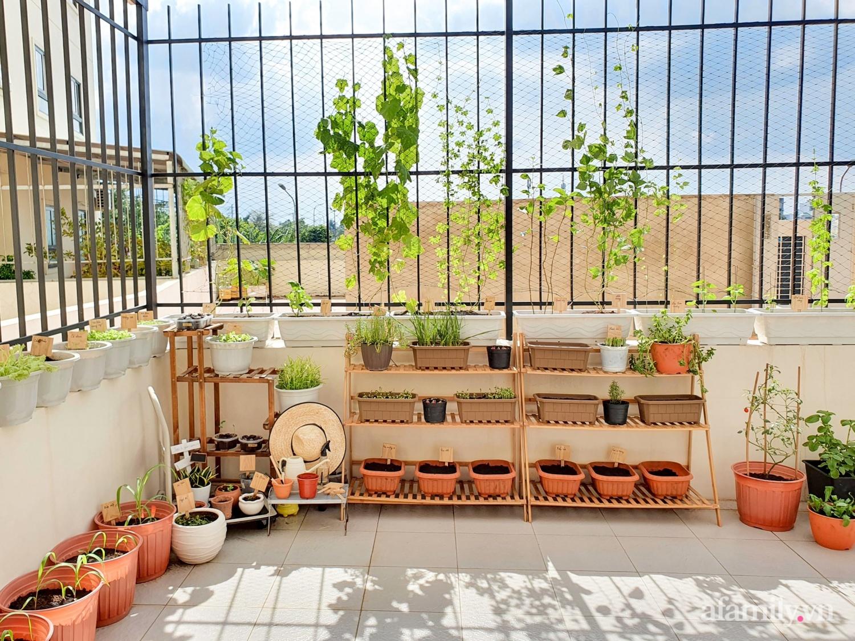 Căn hộ 180m² được vợ chồng trẻ cải tạo vừa ở vừa làm vườn có chi phí 550 triệu đồng ở Sài Gòn - Ảnh 15.