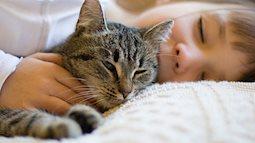 """Tranh cãi dữ dội về việc cho mèo ngủ cạnh em bé nhưng CĐM vẫn khẳng định bị """"đốn tim"""" vì chi tiết đáng yêu này"""