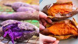 Khoai lang tím và khoai lang vàng cái nào tốt hơn? Sức mạnh tuyệt vời của dưỡng chất tạo nên màu khoai lang