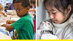6 bí mật rất đáng học hỏi từ hệ thống giáo dục Nhật Bản, đặt nền móng định hướng để trẻ em thành công từ rất sớm