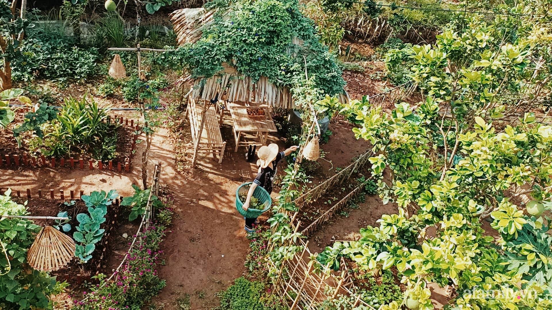 Cuộc sống bình dị vui thú điền viên của cặp vợ chồng trẻ ở huyện Giồng Trôm, Bến Tre - Ảnh 12.