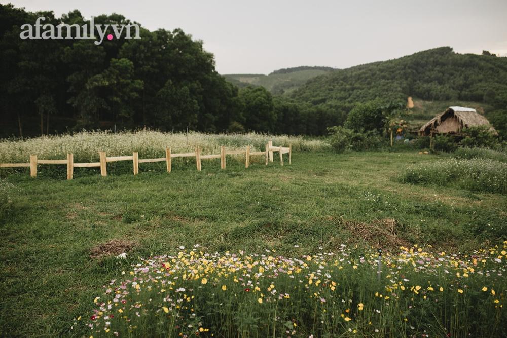 Cặp vợ chồng trẻ bỏ phố về quê xây ngôi nhà nhỏ trên mảnh đồi 2ha phủ quanh toàn hoa cỏ đồng nội như vườn Châu Âu - Ảnh 6.