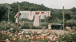 Cặp vợ chồng trẻ bỏ phố về quê xây ngôi nhà nhỏ trên mảnh đồi 2ha phủ quanh toàn hoa cỏ đồng nội như vườn Châu Âu