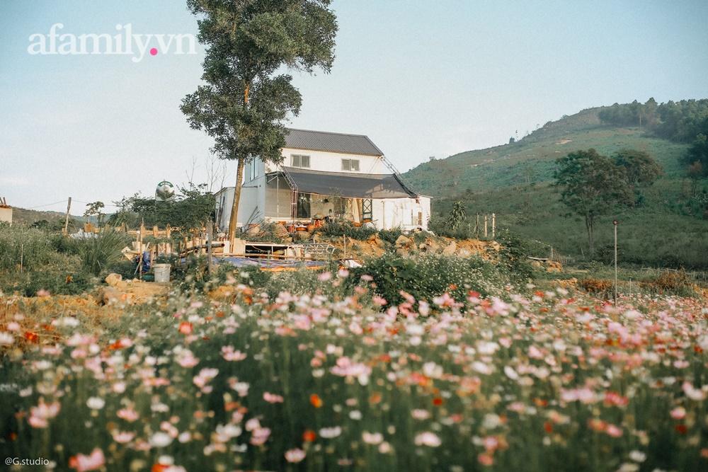 Cặp vợ chồng trẻ bỏ phố về quê xây ngôi nhà nhỏ trên mảnh đồi 2ha phủ quanh toàn hoa cỏ đồng nội như vườn Châu Âu - Ảnh 7.