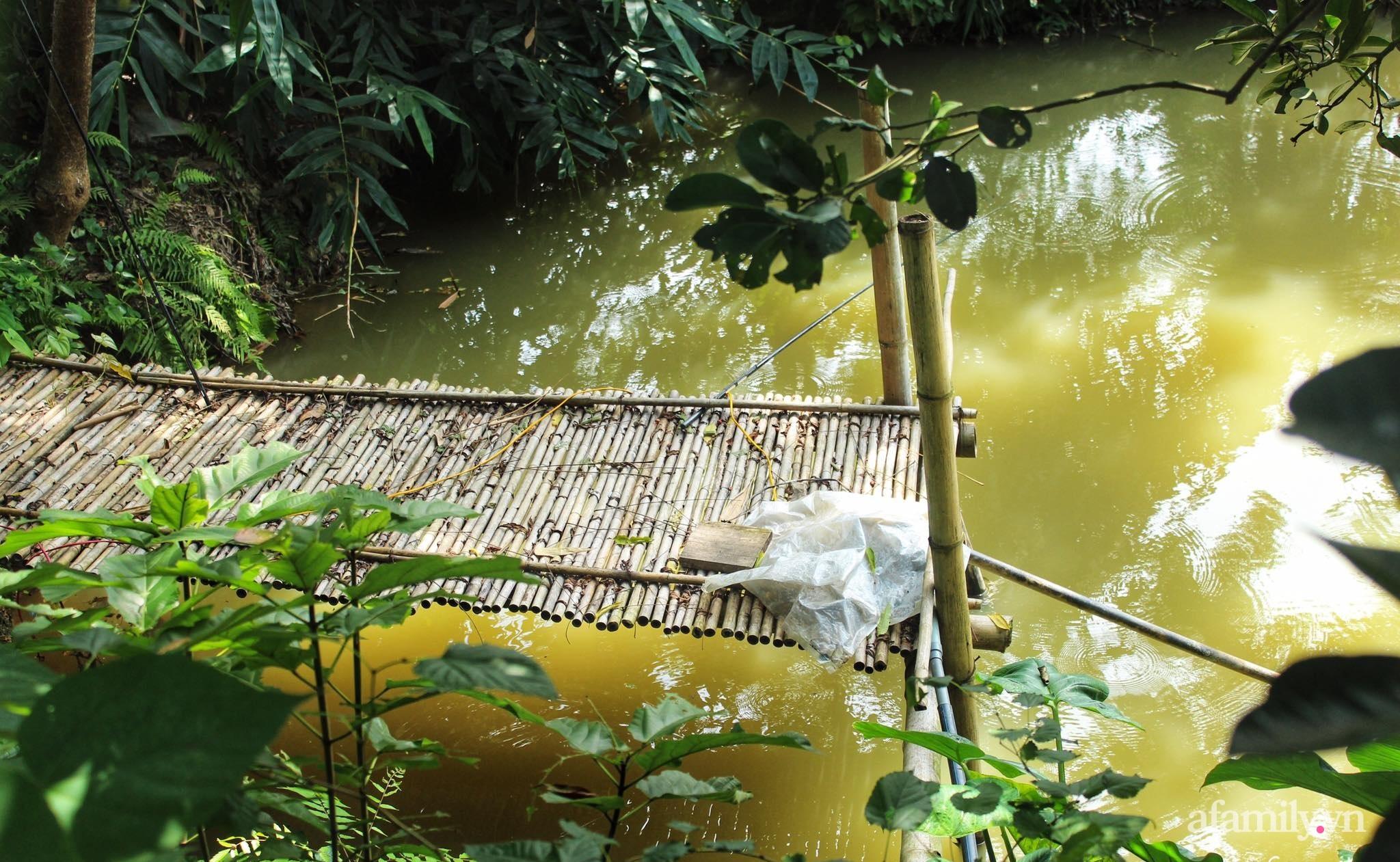 Cô gái trẻ bỏ Hà Nội phố về quê trồng rau nuôi cá, tạo không gian xanh sống cuộc đời an lành - Ảnh 10.