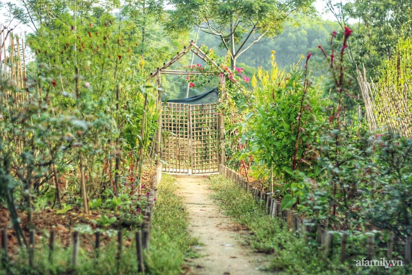Khu vườn 100m2 bình yên như cổ tích của cô gái rời Hà Nội về quê - Ảnh 5.