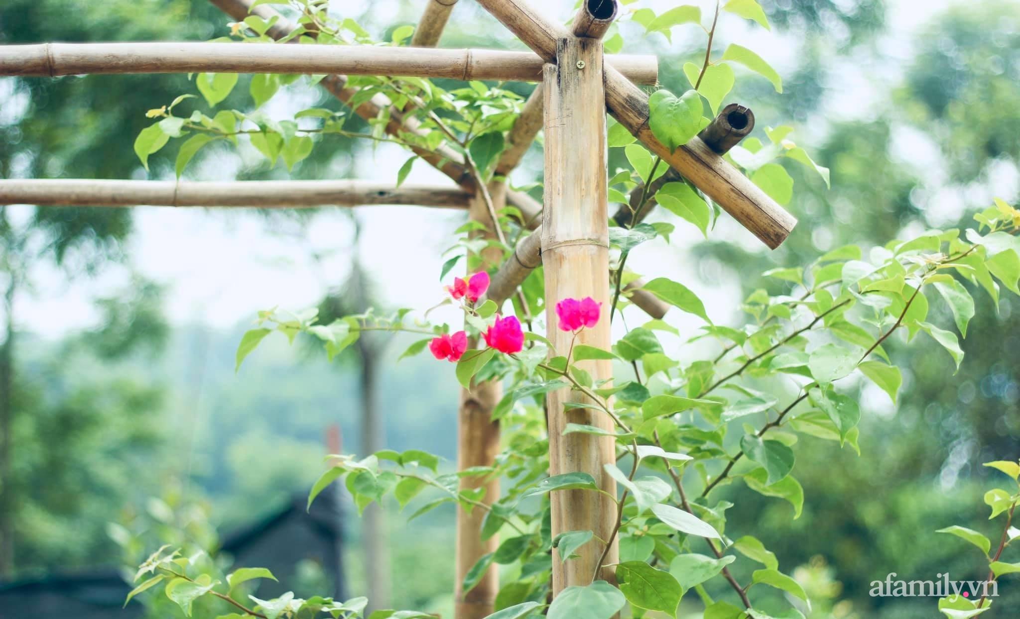 Cô gái trẻ bỏ Hà Nội phố về quê trồng rau nuôi cá, tạo không gian xanh sống cuộc đời an lành - Ảnh 12.