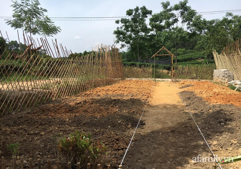 Cô gái trẻ bỏ Hà Nội phố về quê trồng rau nuôi cá, tạo không gian xanh sống cuộc đời an lành - Ảnh 5.