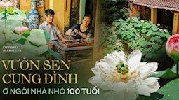 Đôi vợ chồng sở hữu căn nhà cổ 100 năm tuổi tại Hà Nội, sưu tập hàng trăm gốc sen cung đình Huế quanh nhà, ai đi qua cũng phải trầm trồ