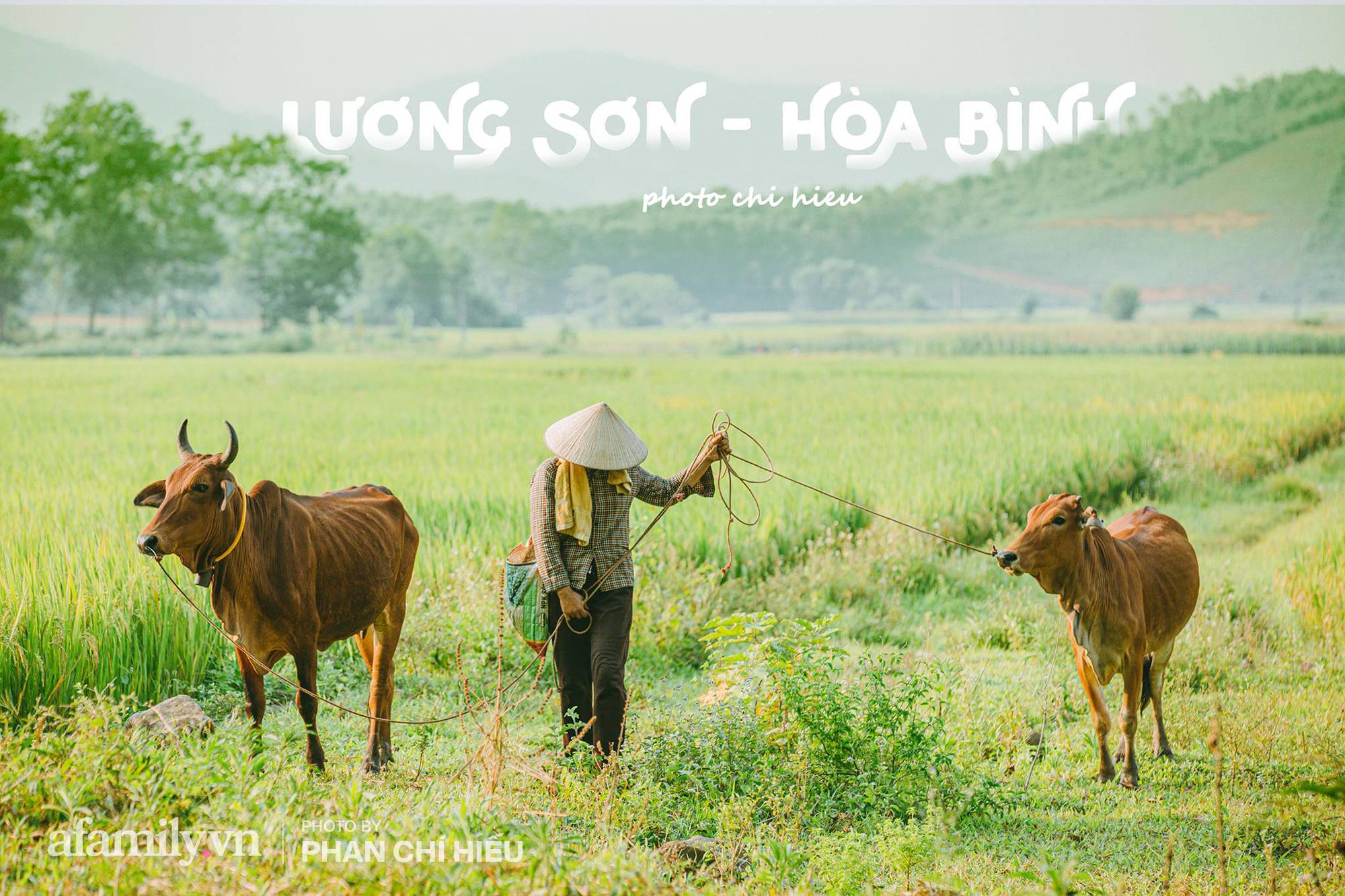 Ngôi làng độc nhất Việt Nam sở hữu