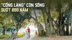 """Ngôi làng độc nhất Việt Nam sở hữu """"CHIẾC CỔNG"""" SỐNG SUỐT 800 NĂM, được công nhận là di sản và là bối cảnh của không biết bao nhiêu bộ phim đình đám"""
