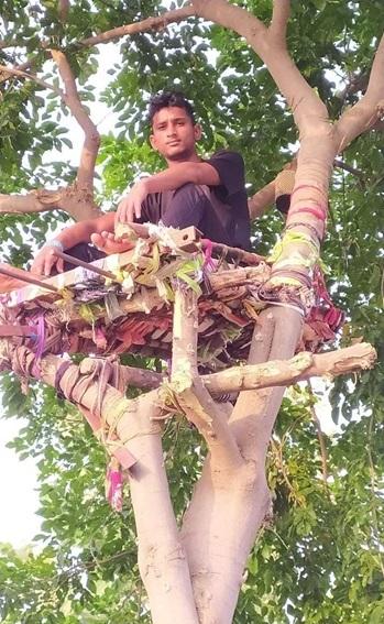 Ấn Độ: Nhiều bệnh nhân Covid-19 tự cách ly hàng chục ngày trên cây như trong phim Tarzan - Ảnh 2.