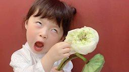 """Háo hức rủ cháu gái 3 tuổi chụp ảnh cùng hoa sen, bác gái dở khóc dở cười với cái kết hài """"nhức nách"""""""