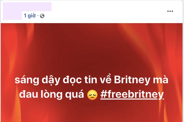 Dàn sao quốc tế, sao Việt và toàn MXH choáng váng về lời khai của Britney Spears, đẩy hashtag #FreeBritney lên #1 Twitter - Ảnh 14.