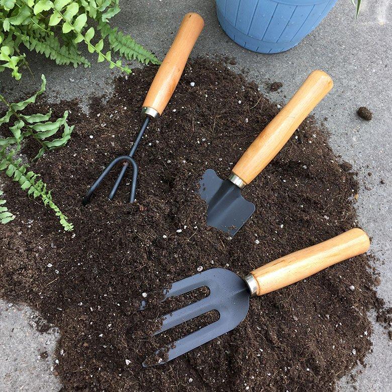 Muốn bắt đầu trồng cây tại nhà thì bạn hãy sắm ngay những dụng cụ dưới đây - Ảnh 10.