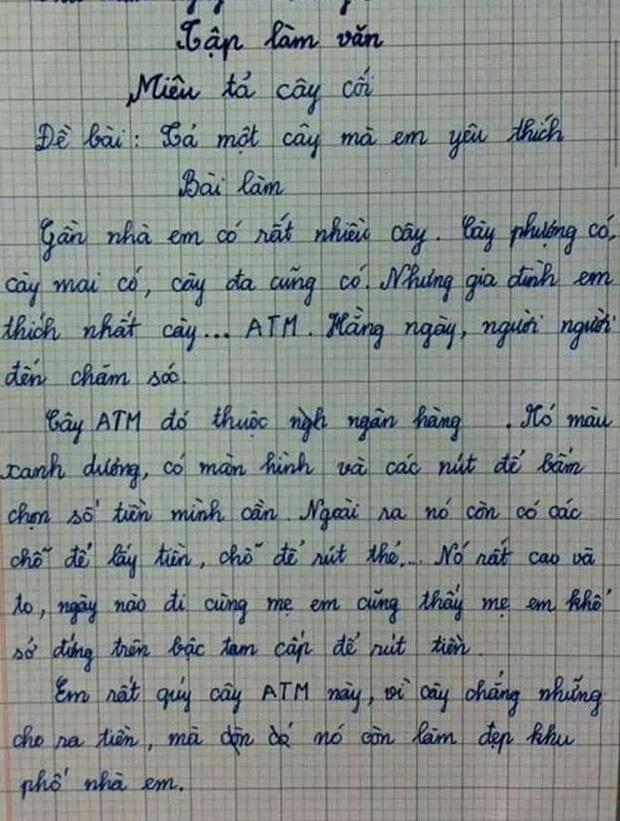 Bài văn tả cây của học sinh lớp 3: Cây kiếm ra tiền, khiến mẹ khổ sở, đọc tên cây mà nhiều người lớn sững sờ - Ảnh 1.