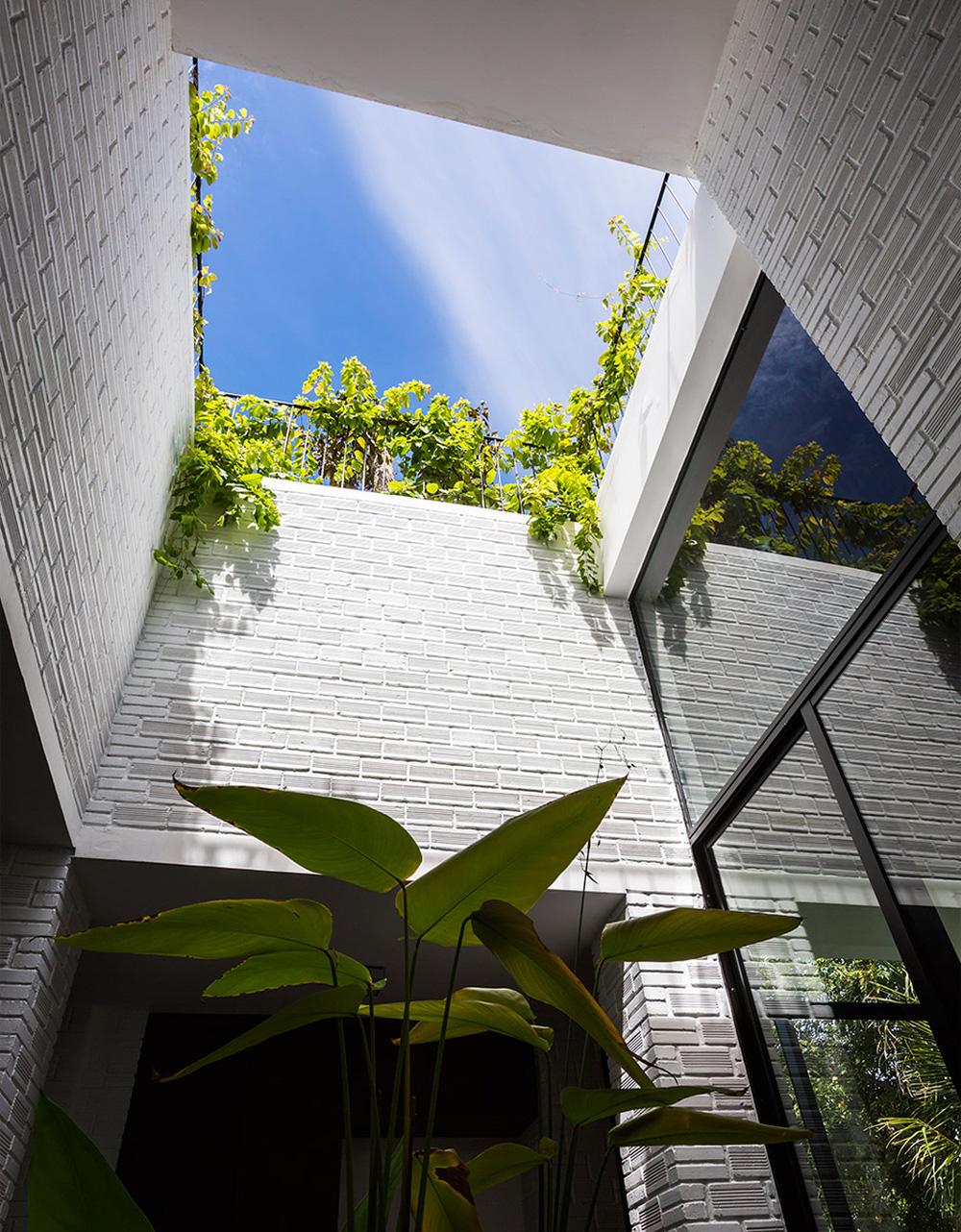 Thêm một công trình đỉnh cao của KTS Võ Trọng Nghĩa: Ngôi nhà với ruộng bậc thang trên mái, ngắm mà phải thốt lên ờ mây zing - Ảnh 7.