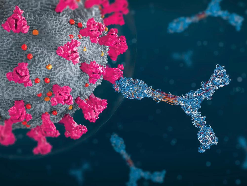 Phát hiện một số người có miễn dịch siêu nhân chống lại Covid-19 - Ảnh 1.