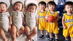 """3 nhóc sinh ba được mệnh danh """"Daehan, Minguk, Manse"""" phiên bản Việt hiện tại ngoại hình thay đổi và được nuôi dạy ra sao?"""