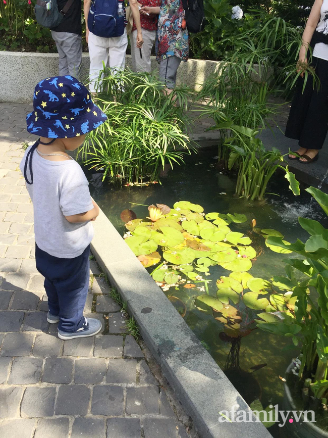 Lời cầu cứu của mẹ Hà Nội nuôi 2 con nhỏ:
