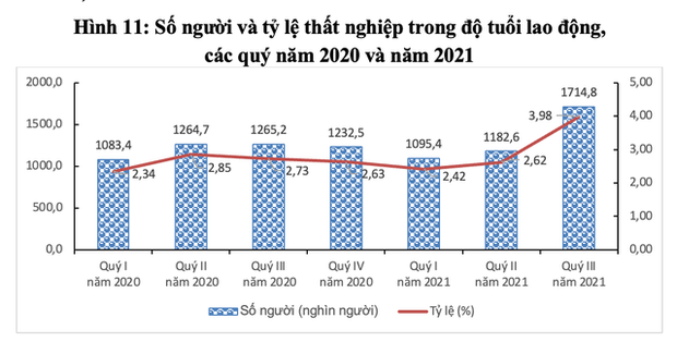 Gần 30 triệu người bị mất việc, giãn việc, giảm thu nhập… vì COVID-19 - Ảnh 3.