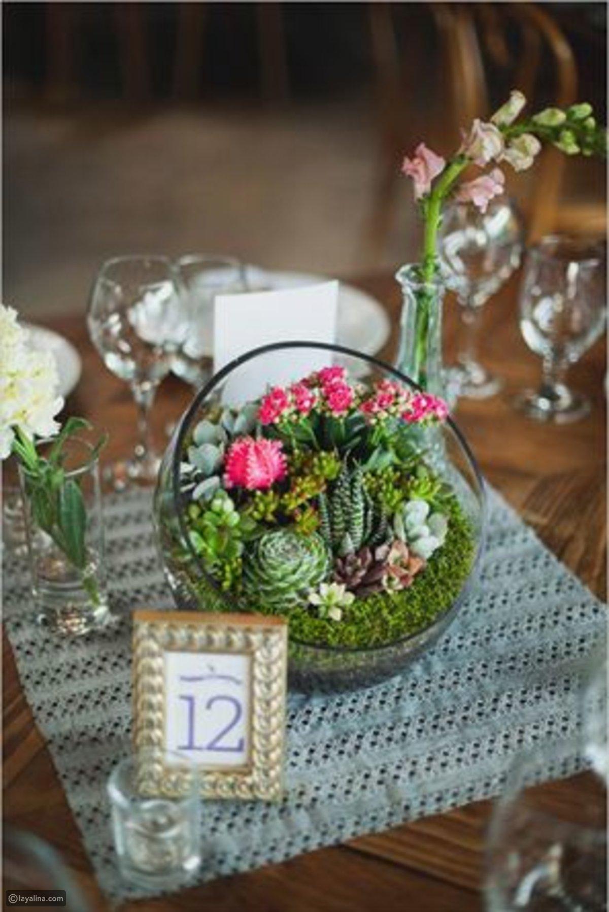 Trang trí nhà với 23 cách trồng cây mọng nước đẹp lạ - Ảnh 2.