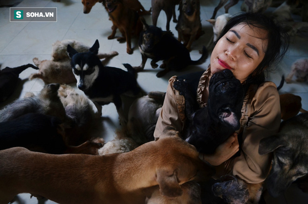 Cặp vợ chồng cưu mang 100 con chó, mèo bị chủ F0 bỏ rơi mùa dịch: 'Chúng tôi không sinh con để chu toàn cho tụi nhỏ' - Ảnh 3.